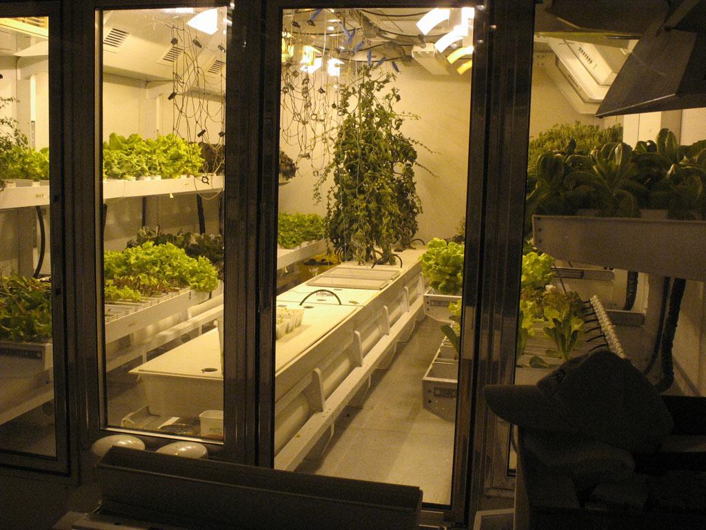 South Pole station greenhouse